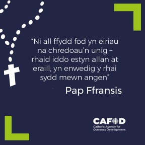 welsh pope francis quote